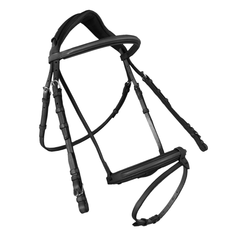 Contact Bridle With French Noseband